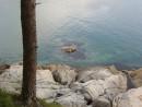 разлинованное море