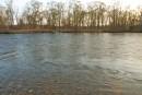 Река Максимовка. Половодье.