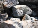 инь-ян на камне в центре