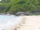 Пляж и камни