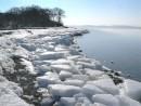 В районе бухты Миноносок, Славянский Залив.