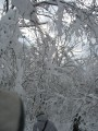 снежные арки