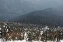Гора Пидан в апреле. Шкотовский район.