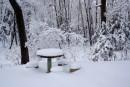 Столик под снегом