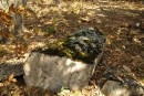 Мшелый камень