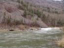 Цветущий багульник на осыпях. Река Тигровая.  Ущелье щеки Дарданеллы. Партизанский район.