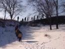 Крепость эпохи Чжурчжэней. Шкотовский район.