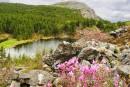 Озеро Алексеевское и вершина г. Ольховая (Китайская)