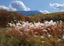 Гора Фалаза в октябре (Шкотовский район, вид из с. Анисимовка)