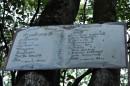 Список растений и животных, которых можно найти на Пидане.