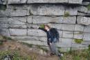 Стена Пидана - рукотворна или природная?