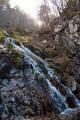 Скат воды из притока Ойры весь покрыт опавшей листвой.
