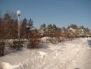 Шмаковка в снегу