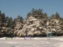 Санаторная зона. Шмаковка. Декабрь 2011