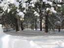 Санаторная зона. Шмаковка. Декабрь 2011. Первый снег зимы.