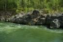 Зеленная вода