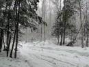 Апрельский снегопад.
