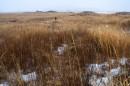 Холмы на зимних болотах