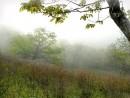 Туманное утро. Гора Янковского.