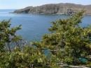 На острове Антипенко