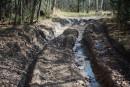 Бездорожье. Дорога на Шкотовские водопады в октябре. Шкотовский район.