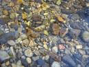 Прозрачная вода. Река Стеклянуха. Шкотовский район. Ранняя весна.