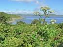 На острове Антипенко.
