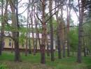 Деревья на территории Военного санатория