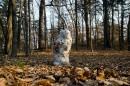 Растаявший снеговик (?).