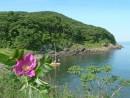 Остров Антипенко