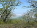 Туман на горе Янковского.