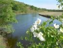 Река Брусья. Хасанский район.