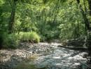 Река Алимовка.
