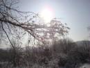 зимнее солнышко