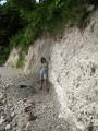 море сделало геологический срез... клада не было
