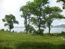 бухта Табунная, взгляд из леса
