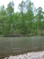 Река Стеклянуха. Шкотовский район. Ранняя весна.