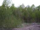 Река Стеклянуха. Шкотовский район. Весна.