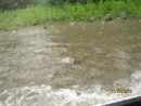 Тайфун. Река Тигровая. Партизанский район.