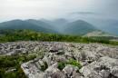 Стелющийся туман окутал правый распадок. С вершины Пидана.