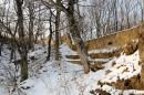 Бруствер форта форта № 10, петляющий через деревья.