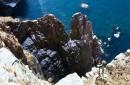 Обрывистые скалы острова Шкота.