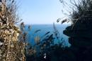 Вид из укрепления на плывущий паром ) Мыс Вятлина.