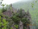 стража шамана в горах аватара