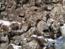 Камни у водопада. Шкотовское плато. Шкотовский район.