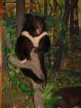 Гималайский мишка. Музей природы Лазовского заповедника. Лазовский район.
