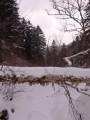 По дороге к водопаду Тигровый. Шкотовское плато. Шкотовский район.