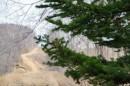Лапы. Дорога вдоль просеки ЛЭП, между хребтами Богатая грива (Океанский) и Береговой (Тимпур).