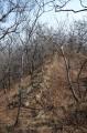 Природная каменная кладка. Гора Воеводская.