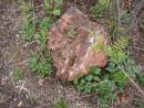05.Куски вулканической породы.